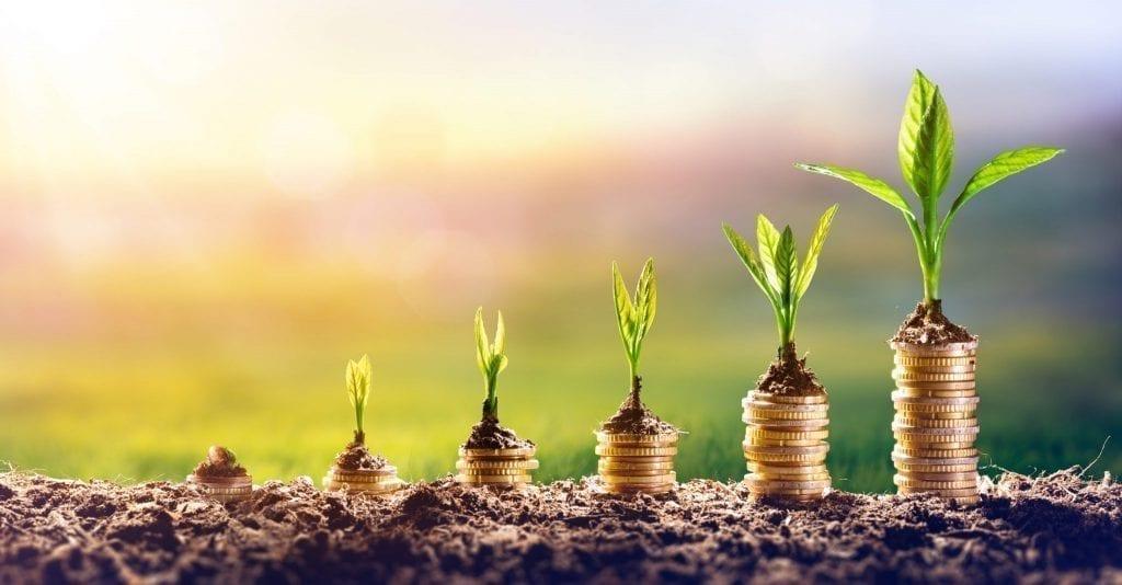 estabilidade-financeira
