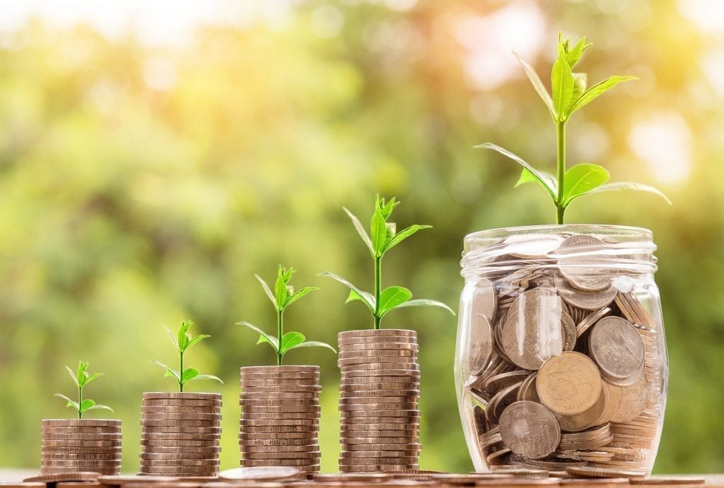 moedas representando o crescimento da renda fixa como plantinhas