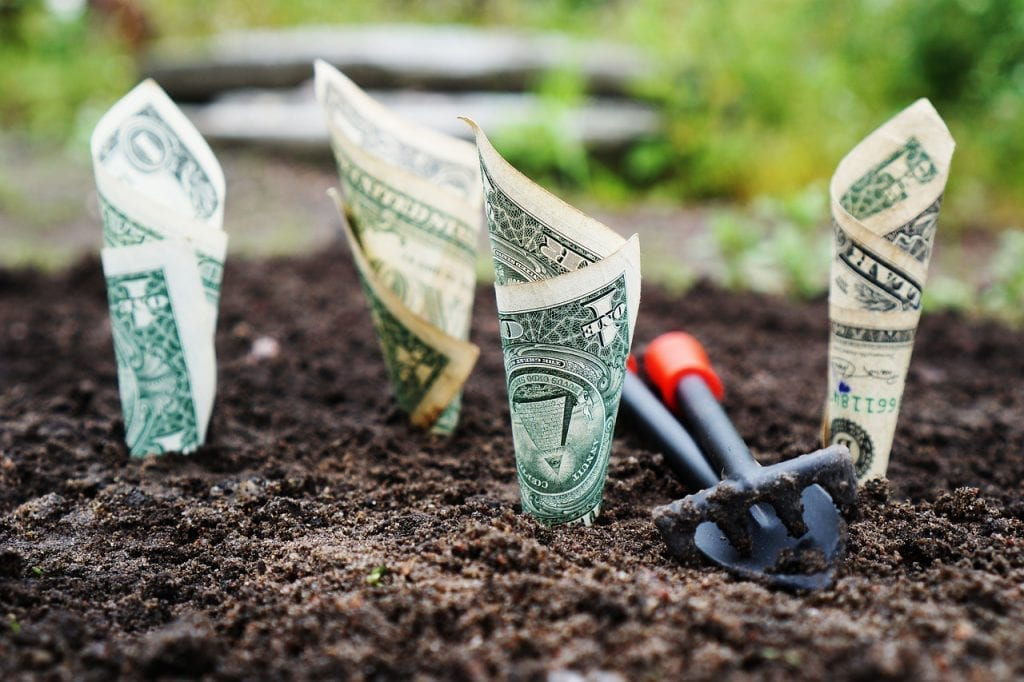 mentoria financeira