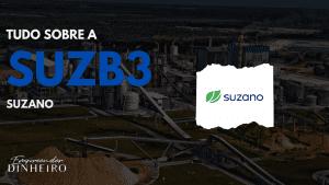 SUZB3: descubra tudo sobre as ações da Suzano!