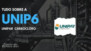 UNIP6: descubra tudo sobre as ações da Unipar Carbocloro!