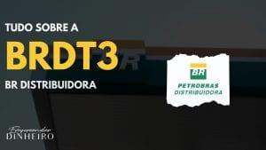 BRDT3: Como lucrar com ações da BRDT3?